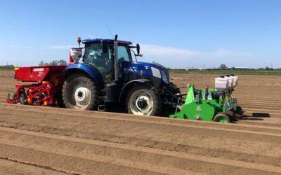 Maris Piper planting Lincolnshire